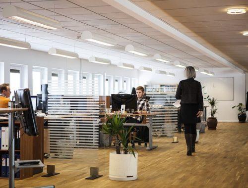 Pracownicy w biurze